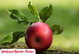 3 hierbas para complementar una dieta para adelgazar
