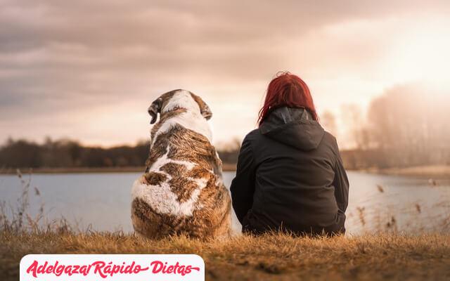 ¿Cómo bajar de peso con la ayuda de una mascota?